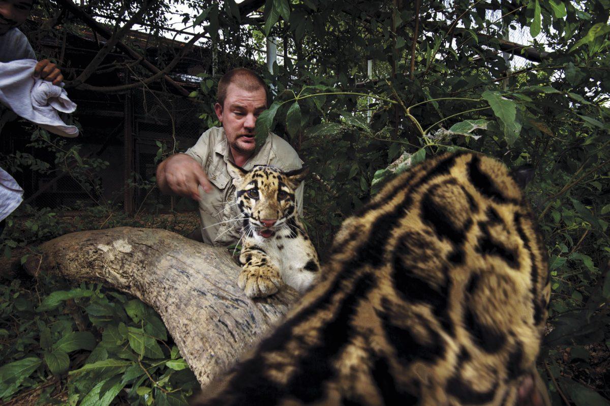การปล่อยสัตว์ป่าคืนสู่ธรรมชาติ