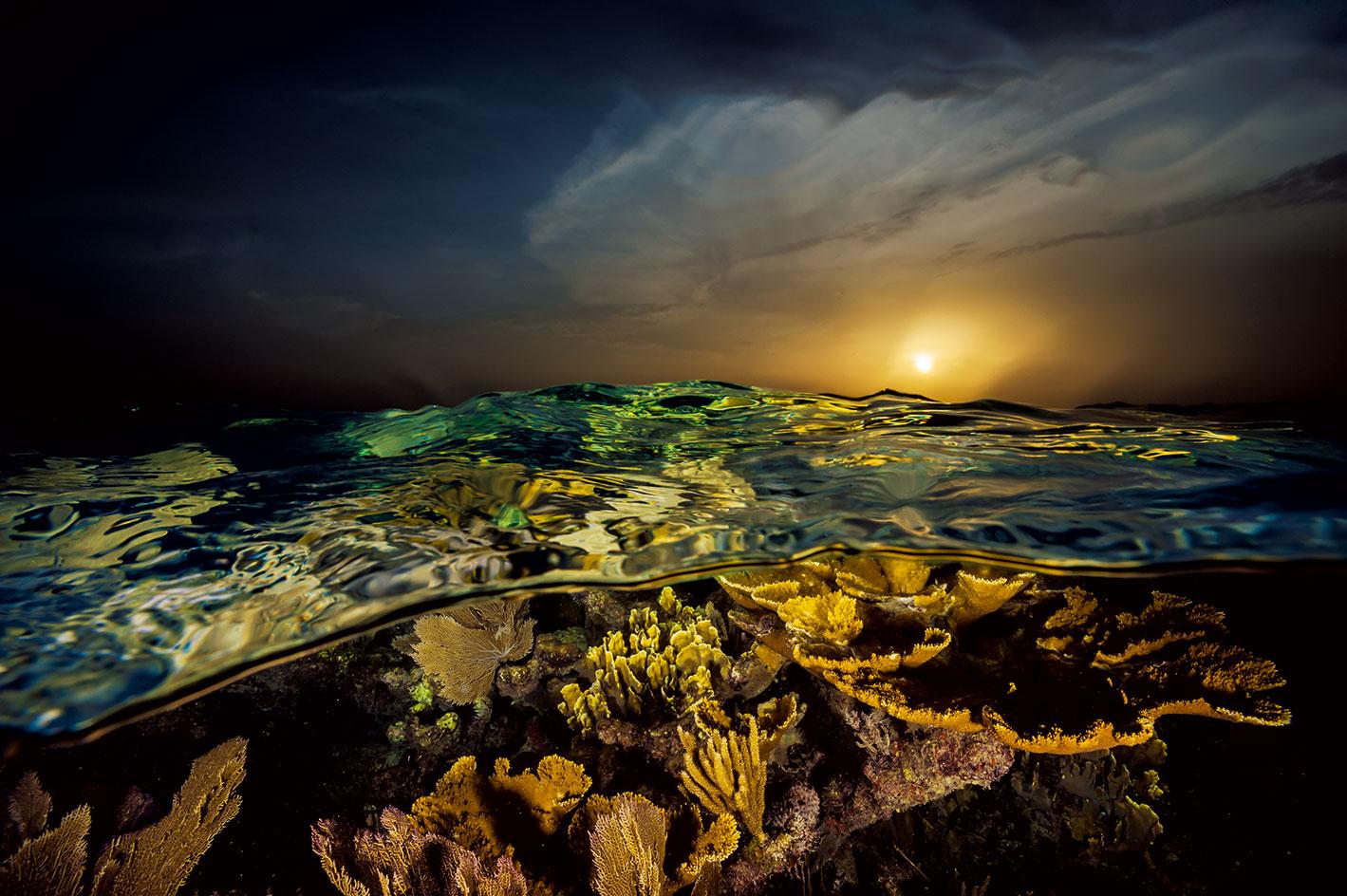 ทะเลแคริบเบียน