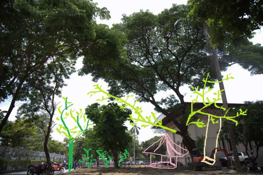 ต้นไม้