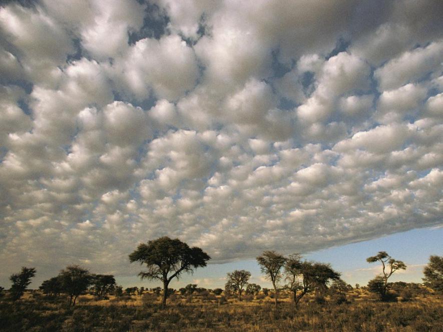 ชนิดของเมฆ ภาพท้องฟ้า