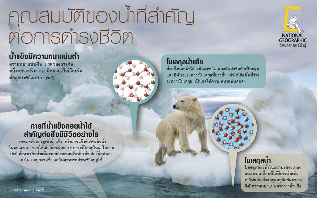 สมบัติที่สำคัญของน้ำ, น้ำแข็ง, วิทยาศษสตร์, ความหนาแน่น