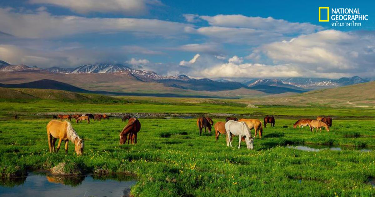 ปากีสถาน, ธรรมชาติ, ท่องเที่ยว, สถานที่ท่องเที่ยว, อุทยานแห่งชาติ