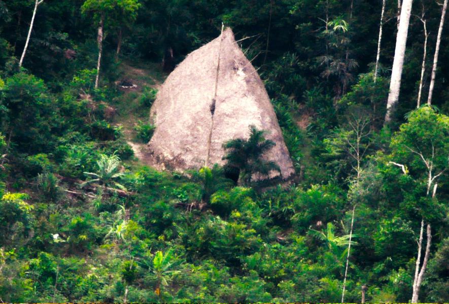 ชนเผ่าในบราซิล