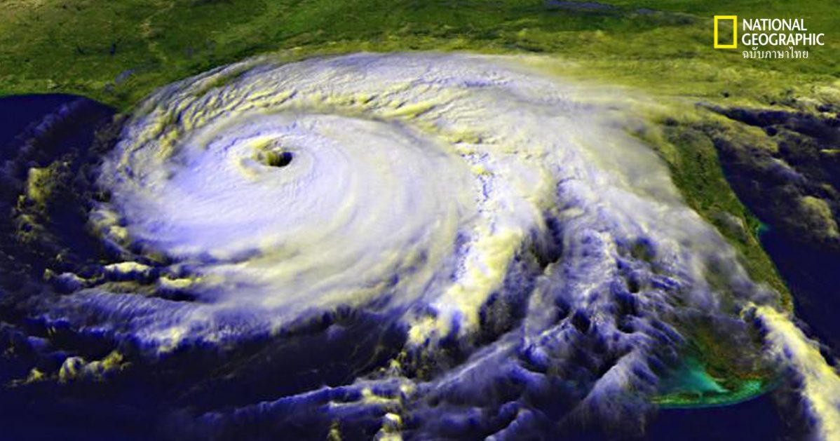 เฮอร์ริเคน พายุหมุนเขตร้อน