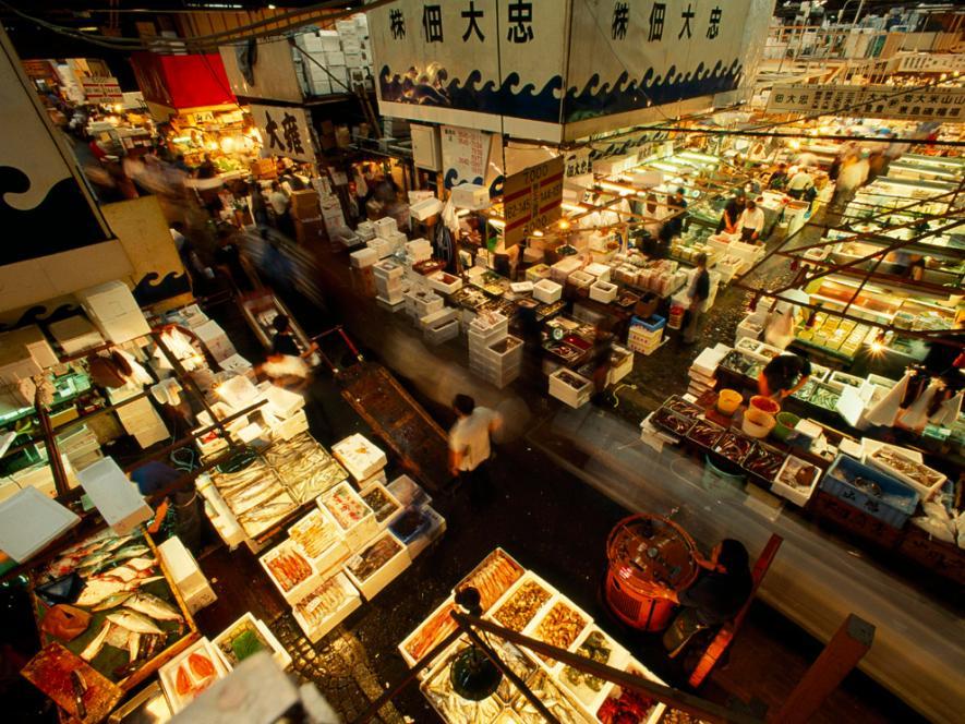 ตลาดปลา, ร้านค้า, แผงลอย, ตลาดสด, อาหารทะเล, ปลาทะเล, ตลาดซึกิจิ