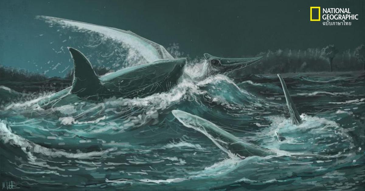 ฉลามโบราณ