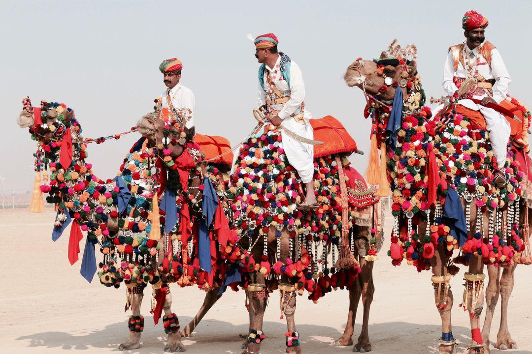 อินเดีย, ประกวดอูฐสวยงาม, เทศกาลน่าเที่ยวในฤดูหนาว