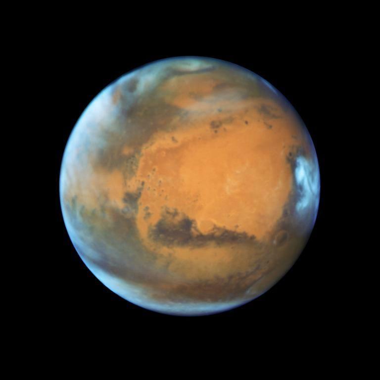 ชีวิตบนดาวอังคาร