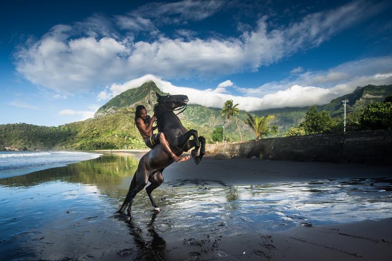 การขี่ม้า, ควบม้า, ม้า, คนขี่ม้า, ขี่ม้าชายหาด