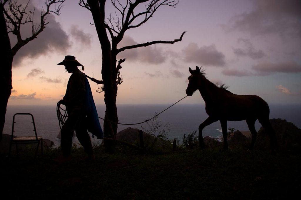 การขี่ม้า, คนเลี้ยงม้า, ม้า, หมู่เกาะ, มาร์เคซัส