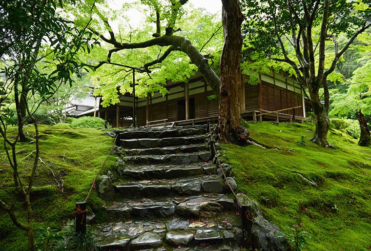 เกียวโต, วัดญี่ปุ่น, โคเคะเดระ