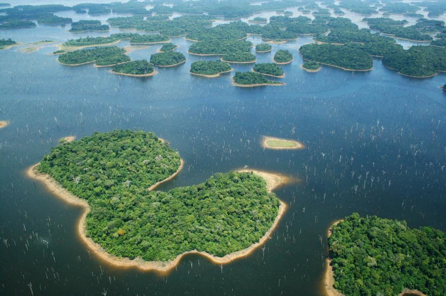 ป่าแอมะซอน