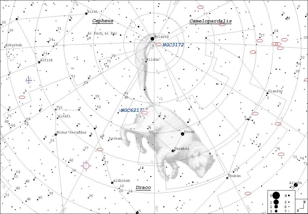 กลุ่มดาวหมีเล็ก, ดาวเหนือ, กลุ่มดาว, ดวงดาว, ดูดาว