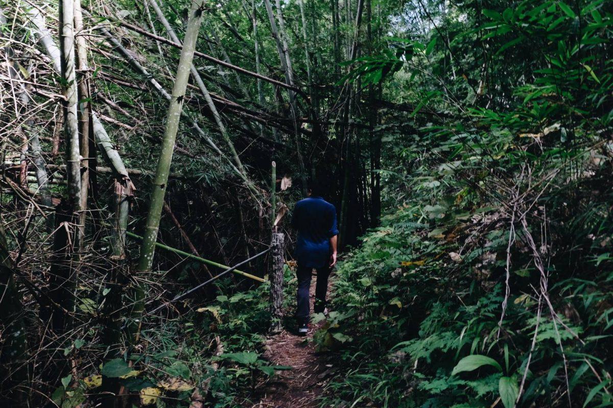 ดอยขุนตาล, อุทยานแห่งชาติดอยขุนตาล, เดินป่า