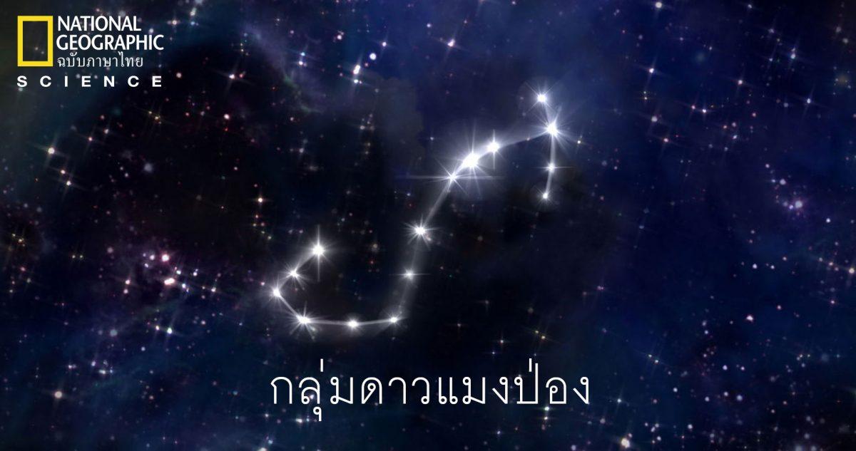กลุ่มดาวแมงป่อง