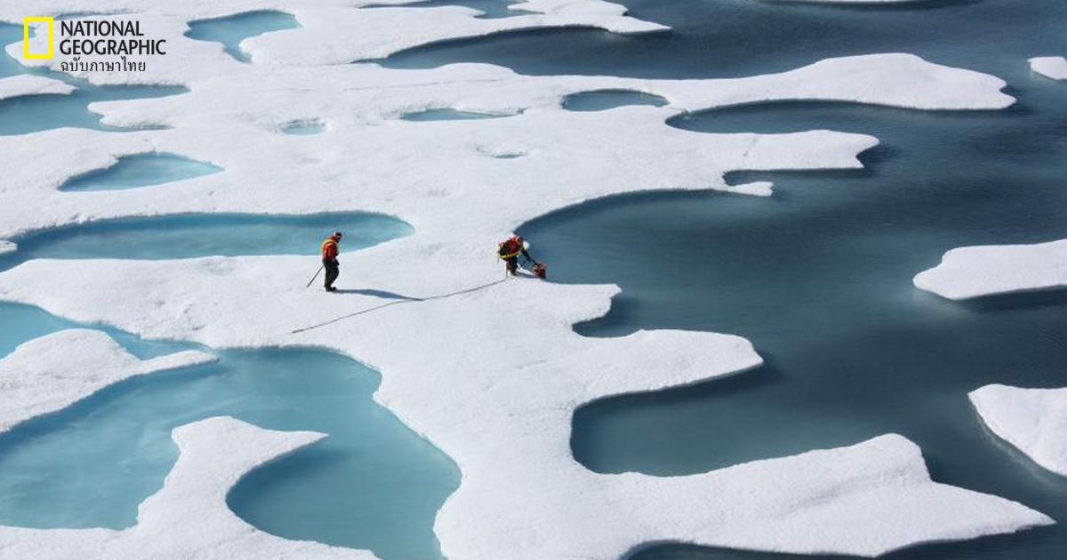 การเปลี่ยนแปลงสภาพภูมิอากาศ, อาร์กติก