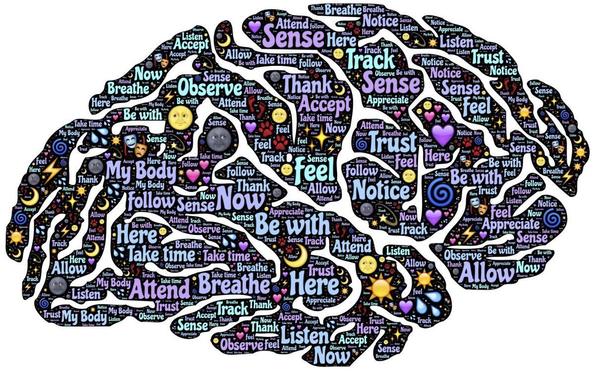 อ่านหนังสือ, พัฒนาสมอง, สมอง