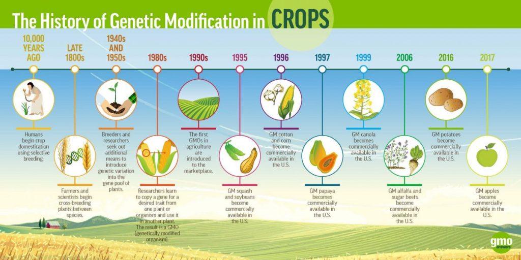 จีเอ็มโอ, สิ่งมีชีวิตดัดแปรพันธุกรรม, GMOs, ยีน