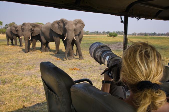 เที่ยวคนเดียว, ถ่ายภาพ, ซาฟารี, แอฟริกา