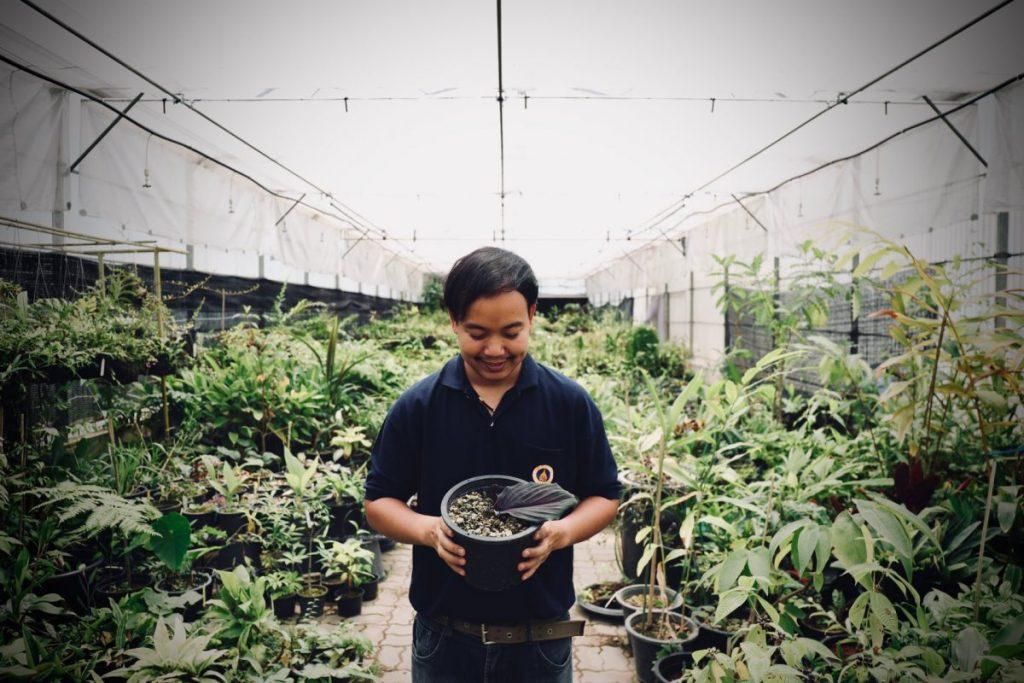พืชชนิดใหม่, นักวิจัยไทย