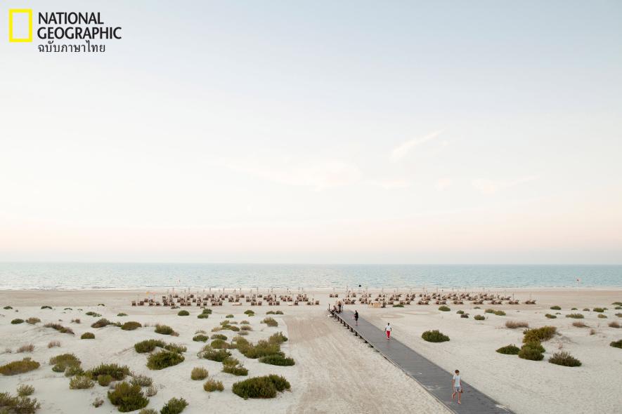 ชายหาดตะวันออกกลาง, อาบูดาบี, ชายหาด