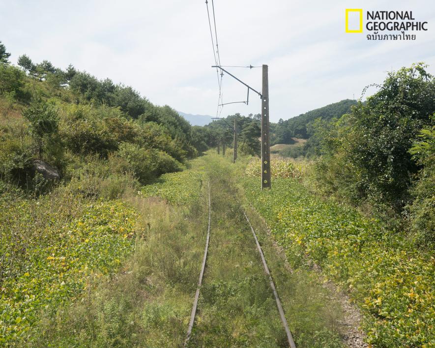 ทางรถไฟ, เกาหลีเหนือ