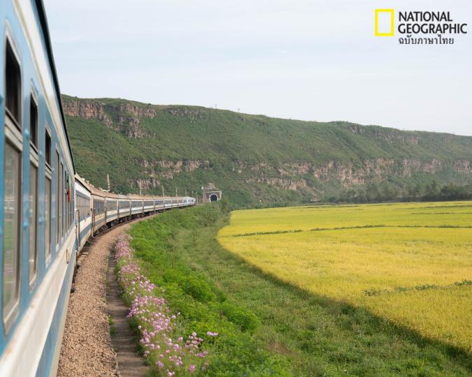 เส้นทางรถไฟ, ทุ่งหญ้า, เกาหลีเหนือ