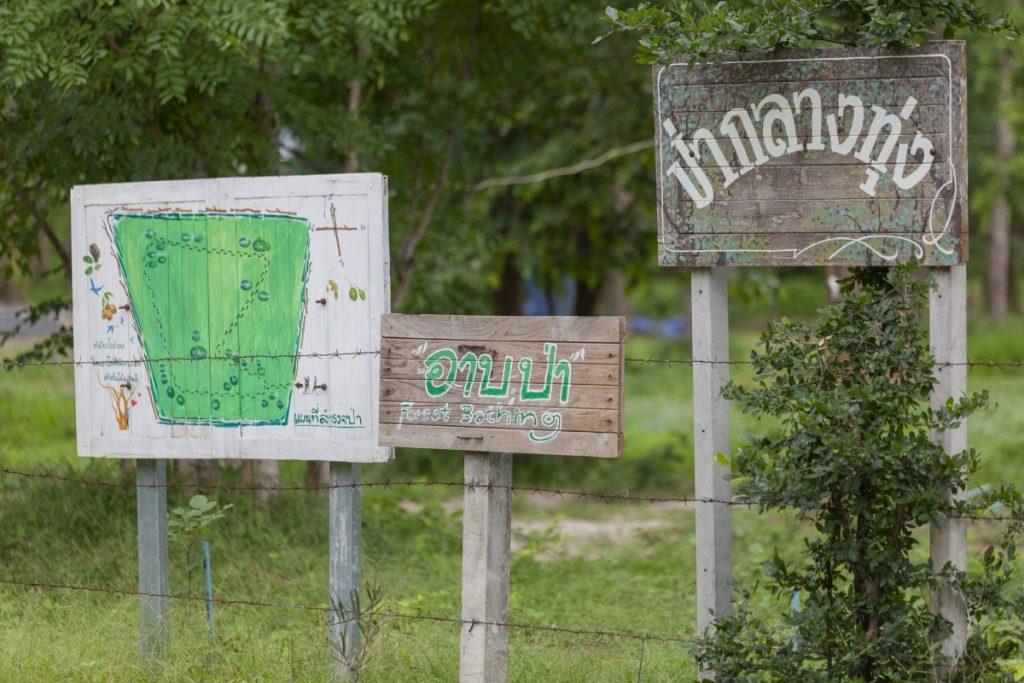 การอาบป่า, อาบป่า, ชินรินโยคุ, กาญจนบุรี, การท่องเที่ยวแห่งประเทศไทย