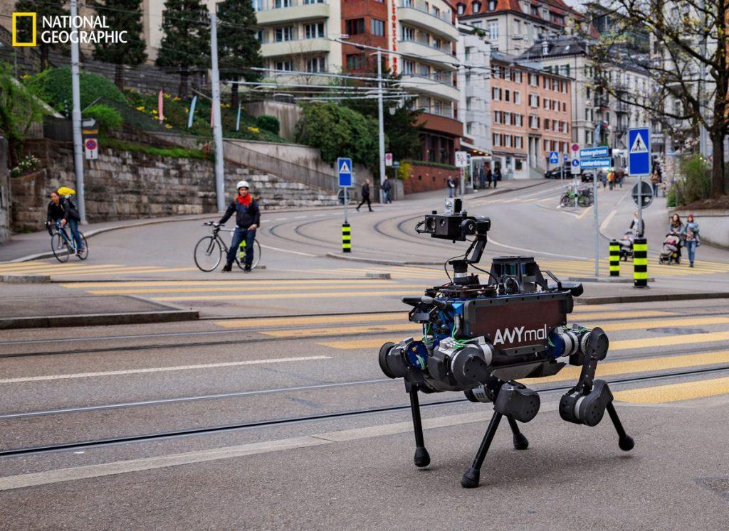 หุ่นยนต์, ปัญญาประดิษฐ์, AI, นวัตกรรม, สิ่งประดิษฐ์, เทคโนโลยีสมัยใหม่
