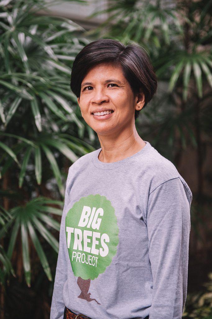 ิbig trees