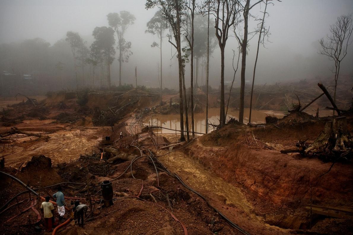 พื้นที่ธรรมชาติ, การตัดไม้ทำลายป่า, บราซิล