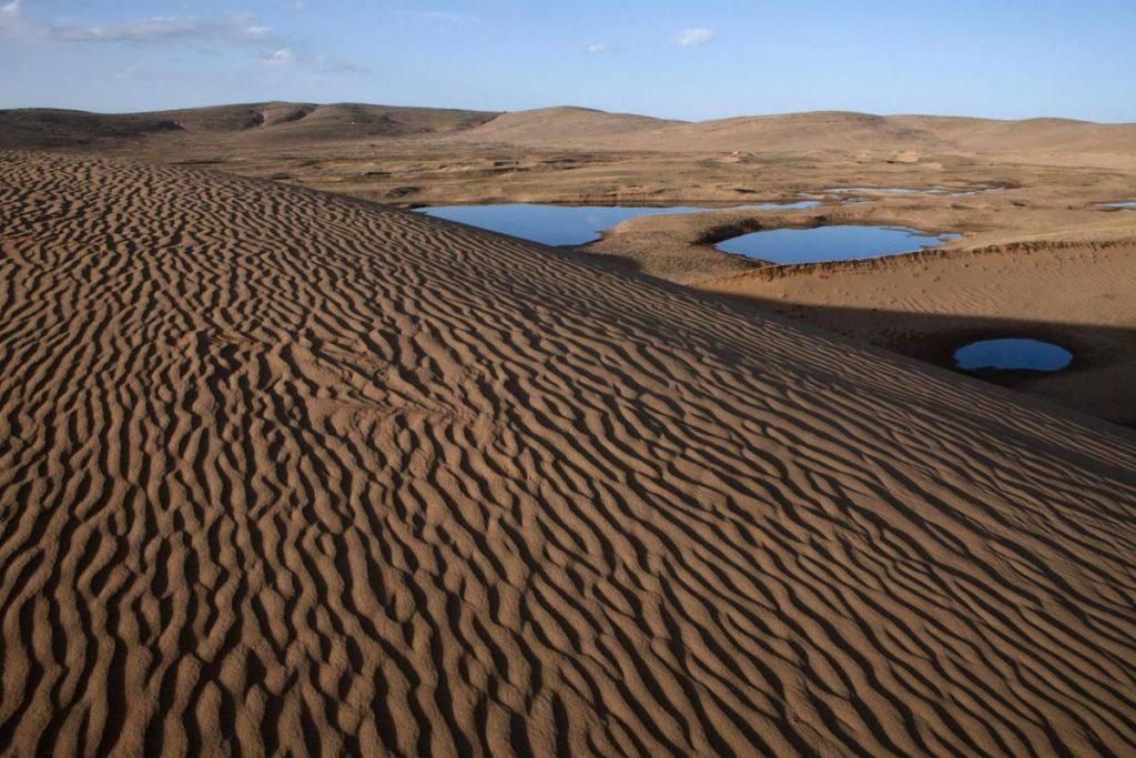 การกลายสภาพเป็นทะเลทราย