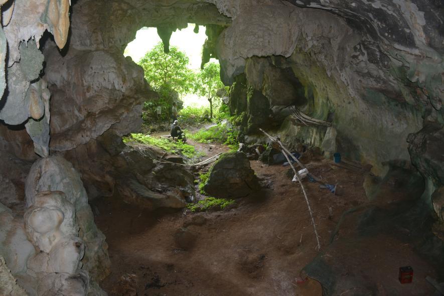 ผนังถ้ำ, ซูลาเวซี, อินโดนีเซีย
